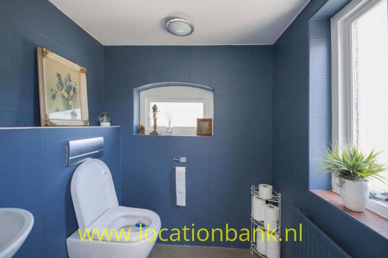 blauw toilet